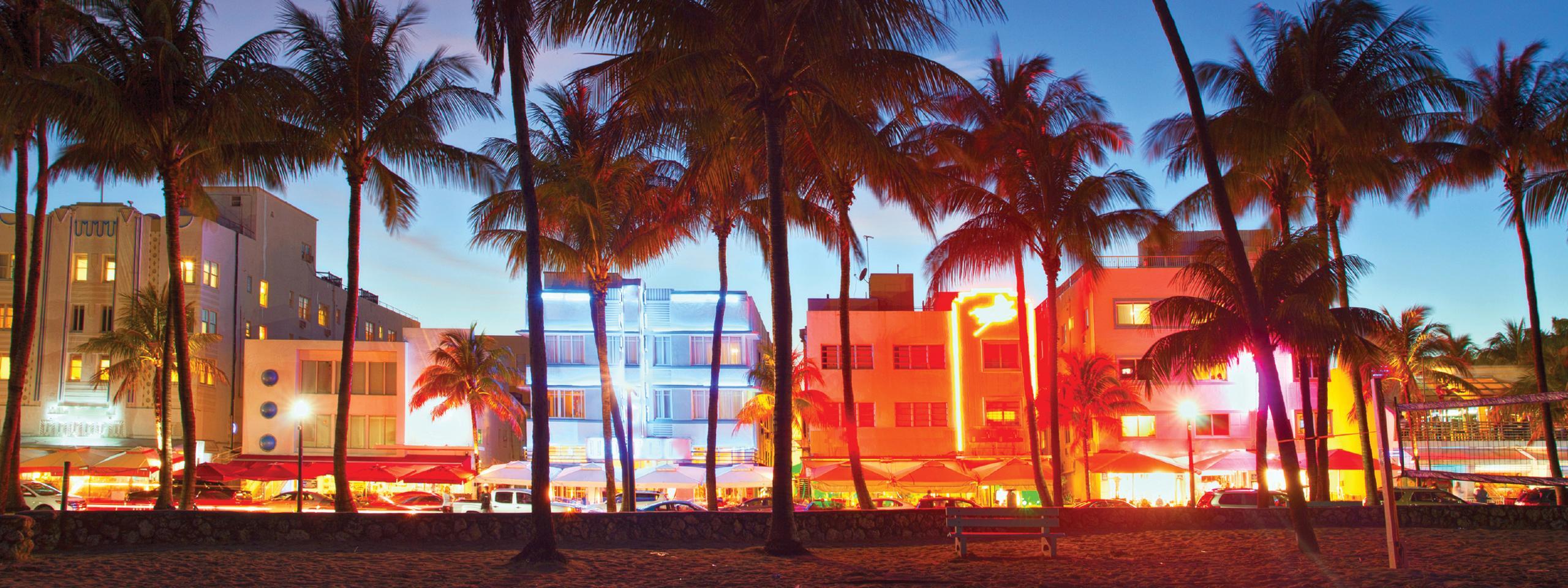 Miami Local Banner